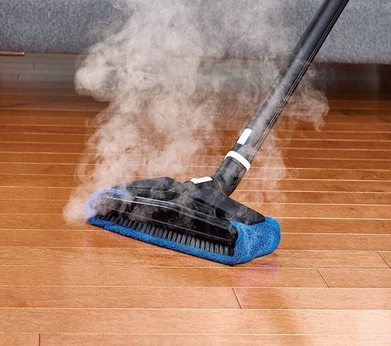 5 Best Steam Cleaners May 2019 Bestreviews