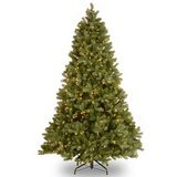"National Tree Company 6.5' ""Feel-Real"" Downswept Douglas Fir Tree with 650 Clear Lights"